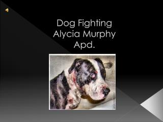 Dog Fighting Alycia Murphy Apd.