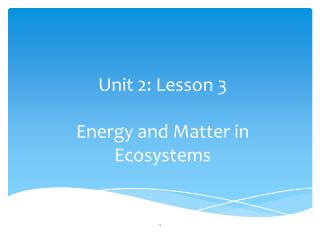 Unit 2: Lesson 3 Energy and Matter in Ecosystems