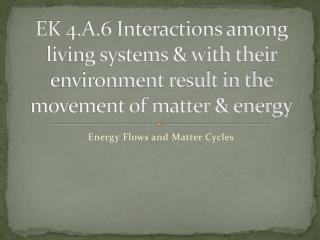 Energy Flows and Matter Cycles