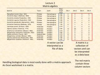 Lecture 2 Matrix  algebra