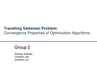 Travelling Salesman Problem:  Convergence  Properties of Optimization Algorithms
