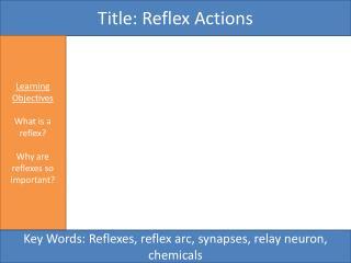 Title:  Reflex Actions