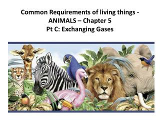 Common Requirements of living things - ANIMALS – Chapter  5   Pt  C: Exchanging  Gases