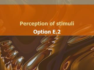 Perception of stimuli