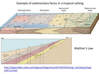 Example of sedimentary  facies in a tropical setting
