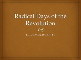 Radical Days of the Revolution