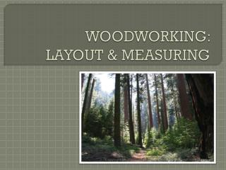 WOODWORKING:  LAYOUT & MEASURING