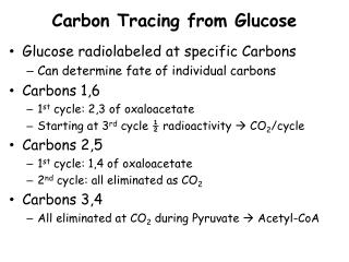 Carbon Tracing from Glucose