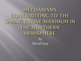 Mechanisms contributing to the Spring ozone maximum in the Northern Hemisphere