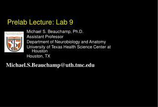 Prelab  Lecture: Lab 9