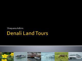 Denali Land Tours