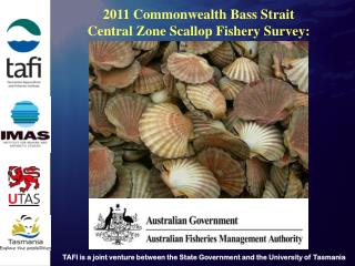 2011  Commonwealth Bass Strait Central Zone Scallop Fishery  Survey:
