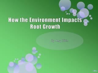 How the Environment Impacts Root Growth