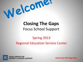Closing The Gaps  Focus School Support