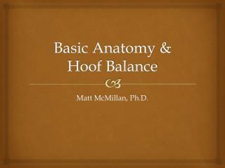 Basic Anatomy &  Hoof Balance