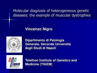 Molecular diagnosis of heterogeneous genetic diseases: the example of muscular dystrophies