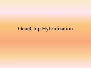 GeneChip Hybridization