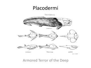 Placodermi