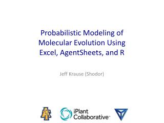 Probabilistic Modeling of  Molecular Evolution Using  Excel,  AgentSheets , and R