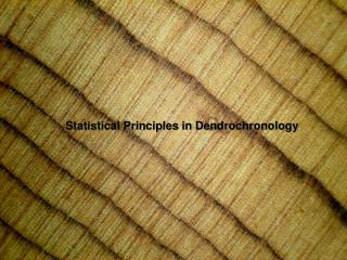 Statistical Principles in Dendrochronology