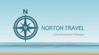 NORTON TRAVEL