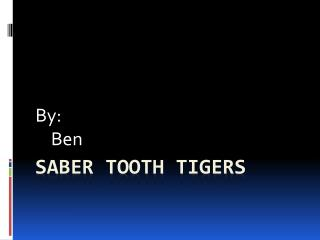 Saber tooth tigers