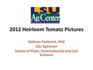 2012 Heirloom Tomato Pictures