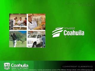 Saltillo Manufacturing Investment Primer