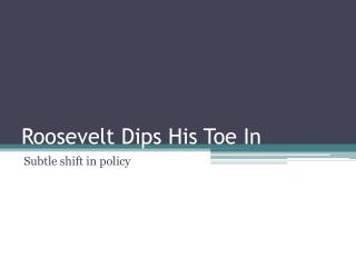 Roosevelt Dips His Toe In