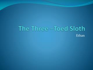 The Three �Toed Sloth