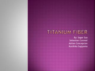 Titanium  Fiber