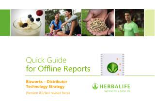 Quick  Guide for Offline Reports