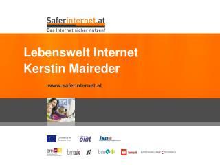 Lebenswelt Internet Kerstin Maireder