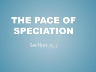 The Pace of Speciation