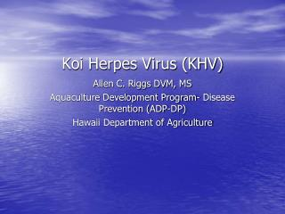 Koi Herpes Virus KHV
