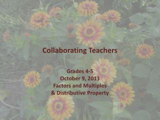 Collaborating Teachers