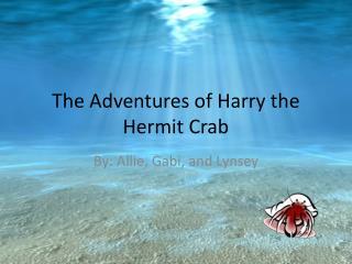 The Adventures of Harry the Hermit Crab
