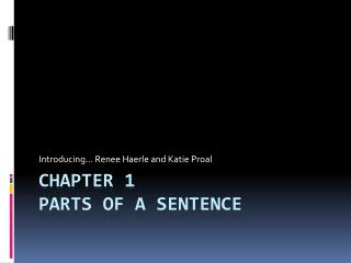 Chapter 1 Parts of a Sentence