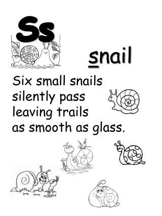 s nail