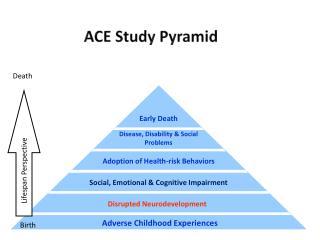 ACE Study Pyramid