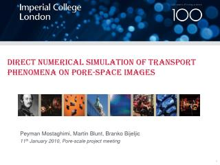 Direct Numerical Simulation of Transport Phenomena on Pore-space Images