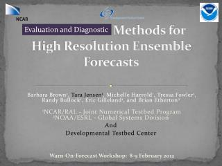 Verification Methods for  High Resolution Ensemble Forecasts