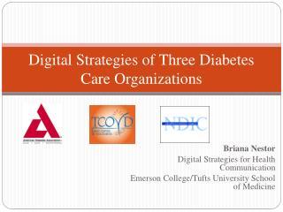 Digital Strategies of Three Diabetes Care Organizations