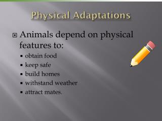Physical Adaptations