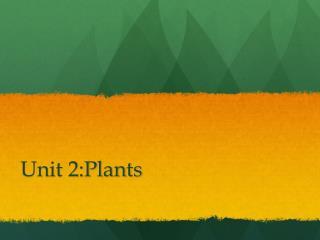 Unit 2:Plants