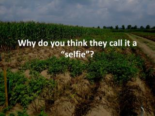 "Why do you think they call it a "" selfie ""?"