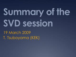 Summary of the SVD session