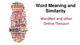 Word Meaning and Similarity