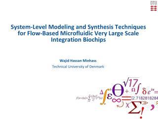Wajid Hassan Minhass Technical University of Denmark