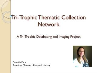 Tri- Trophic  Thematic Collection Network
